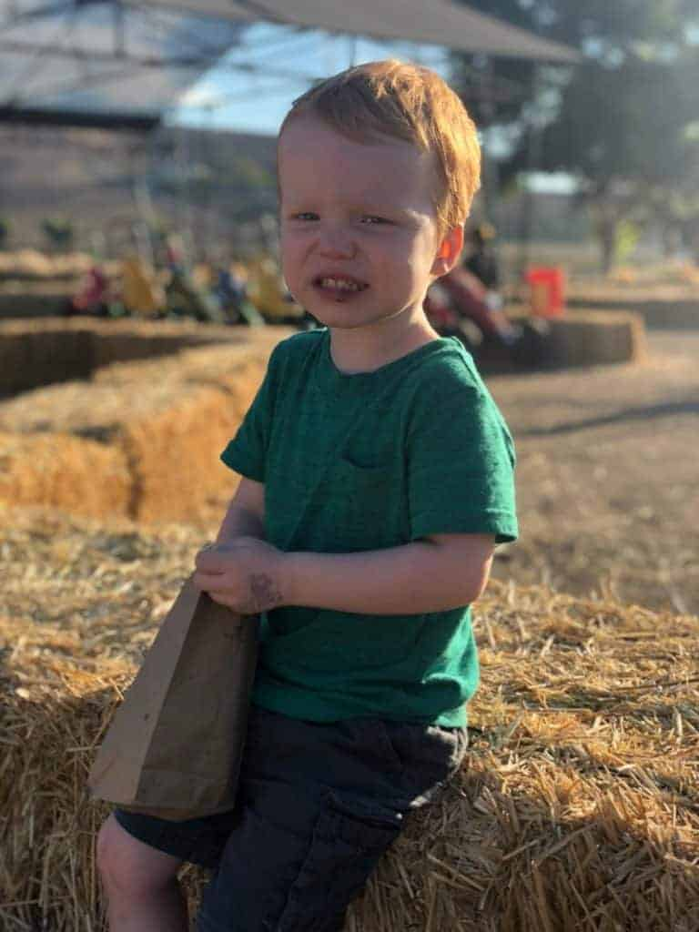 Four year old Jack Dunham eating kettle corn at the pumpkin patch.